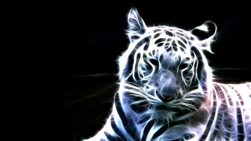 Animals-Cool-Wallpapers-HD-1366x768-10-1024x576