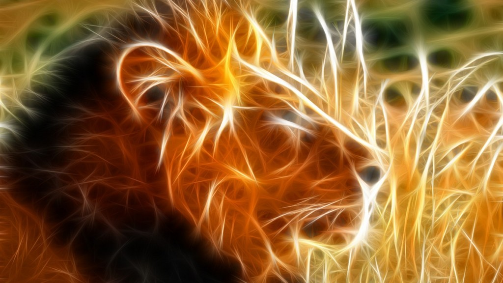 Animals-Cool-Wallpapers-HD-1366x768-4-1024x576