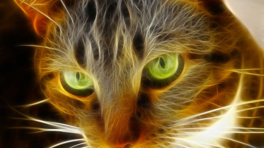 Animals-Cool-Wallpapers-HD-1366x768-7-1024x576