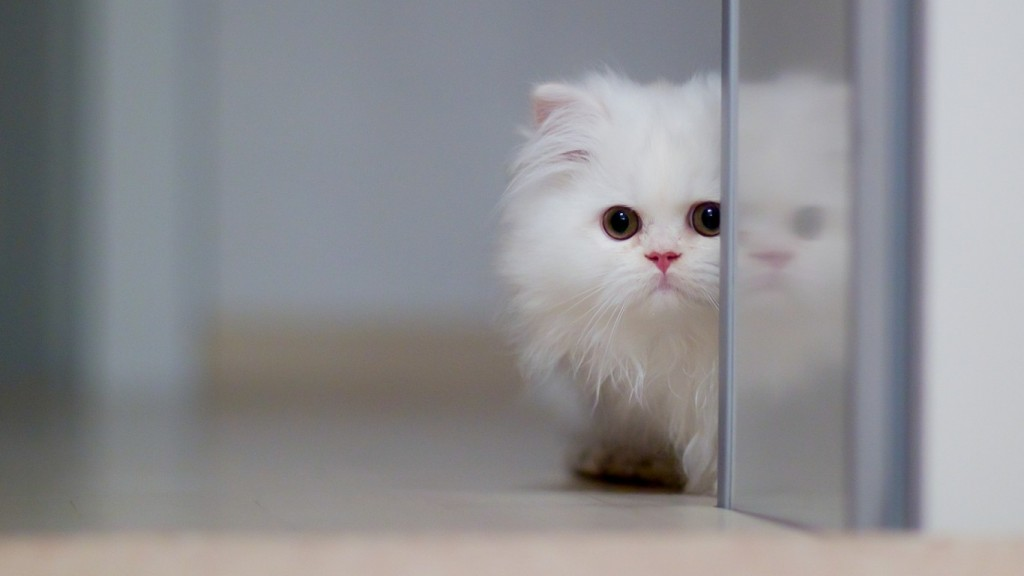 Cute Wallpapers HD 1366x768 8