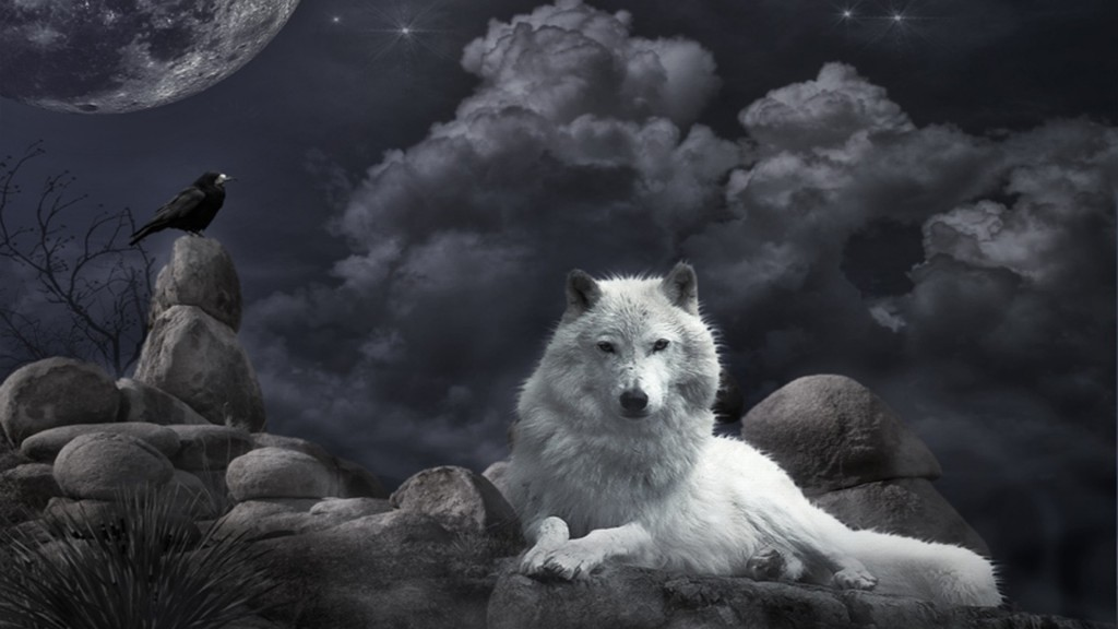Desktop-Wolf-Wallpaper-HD-1920x1080-2-1024x576