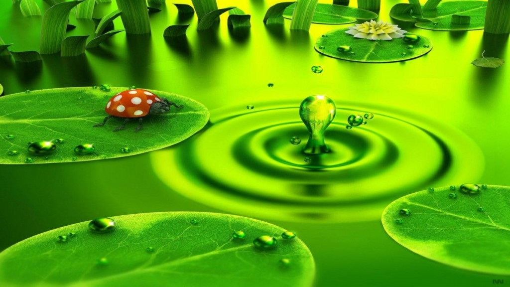 Nature-Green-Wallpaper-HD-1366x768-1-1024x576