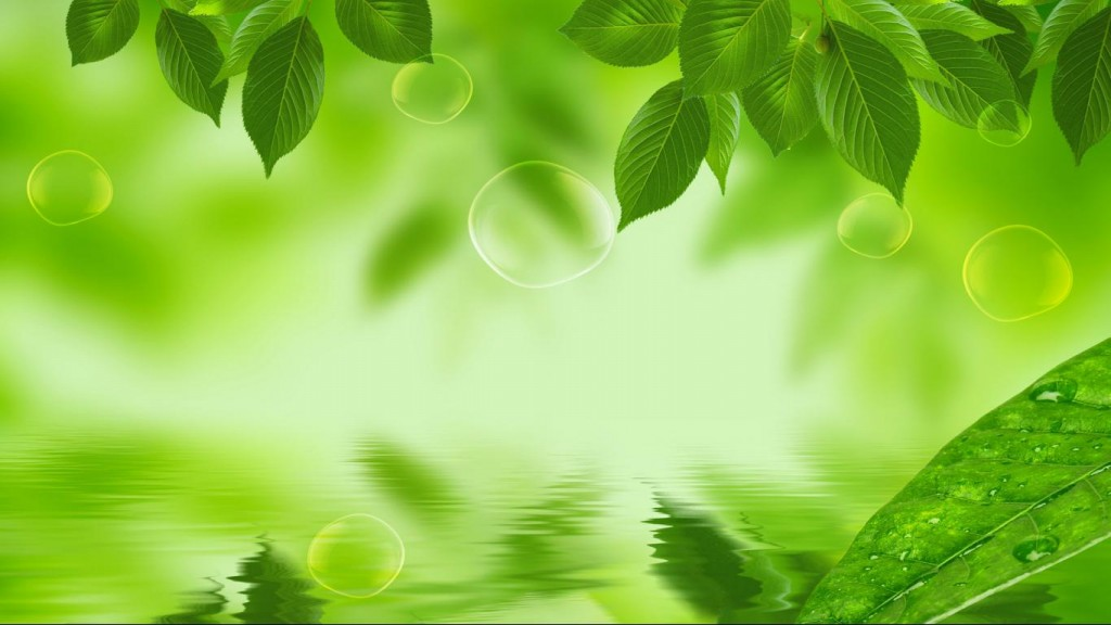 Nature-Green-Wallpaper-HD-1366x768-3-1024x576