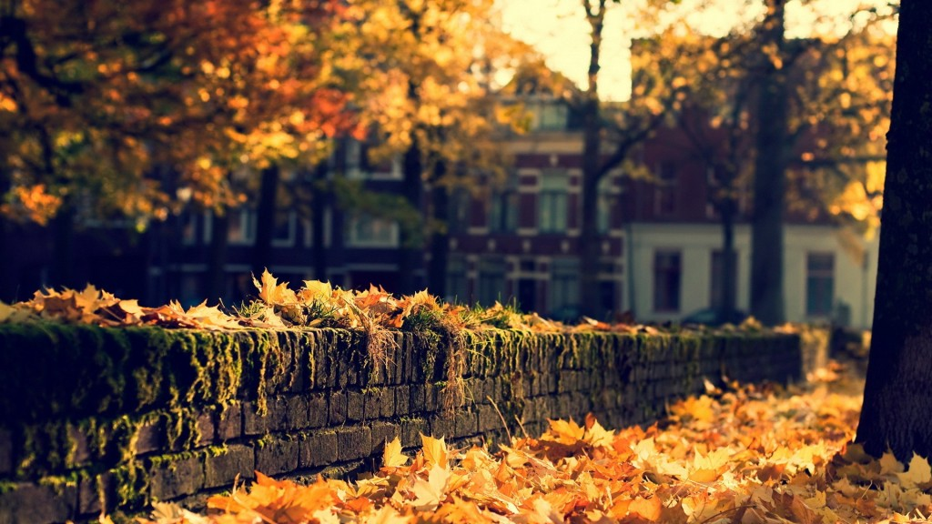 Season-Fall-Wallpaper-HD-1920x1080-3-1024x576