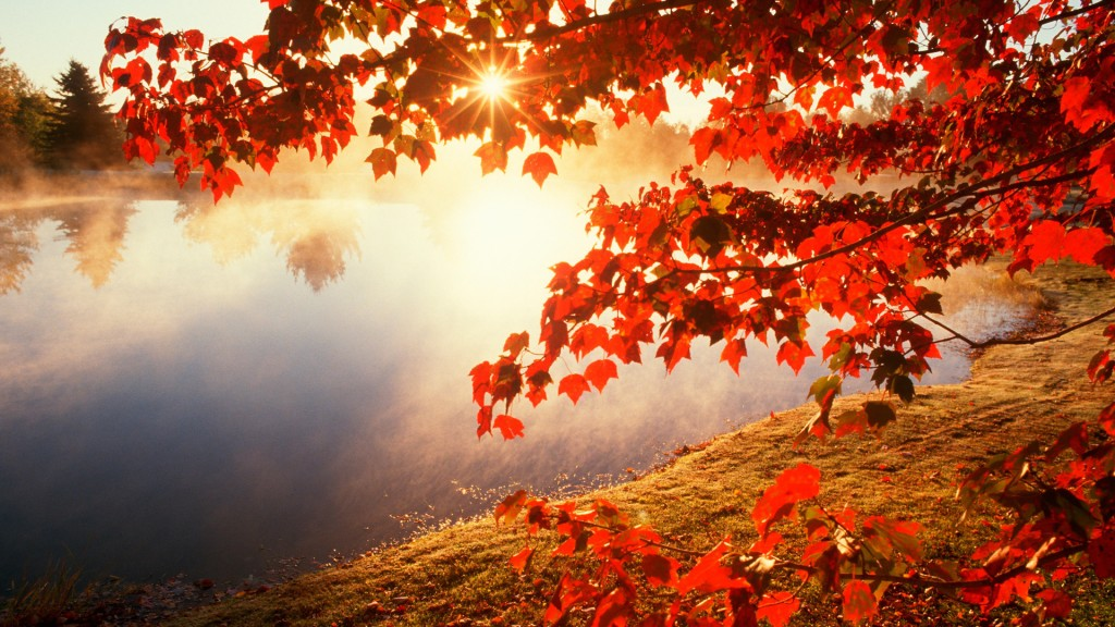 Season-Fall-Wallpaper-HD-1920x1080-5-1024x576