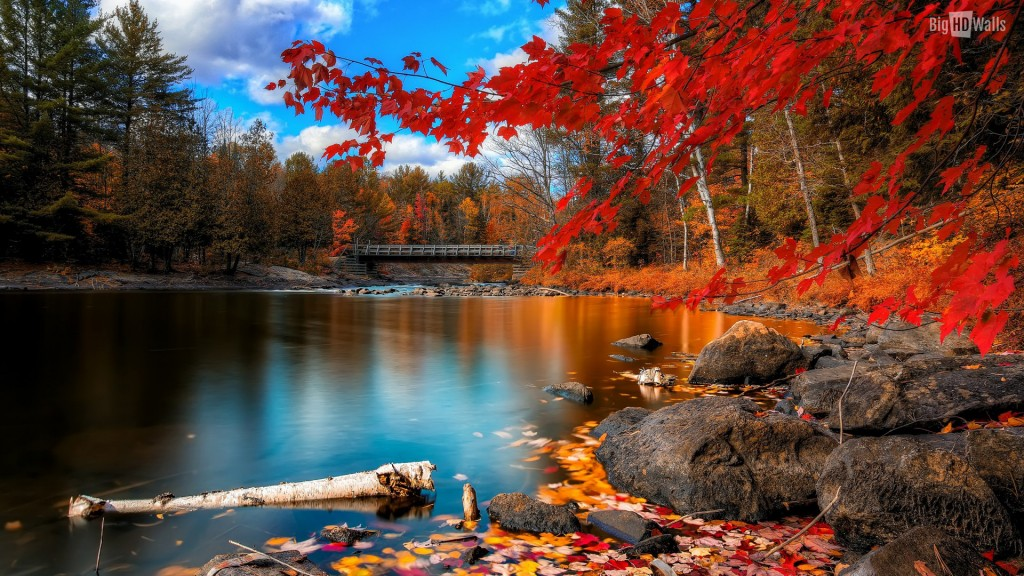 Season-Fall-Wallpaper-HD-1920x1080-9-1024x576