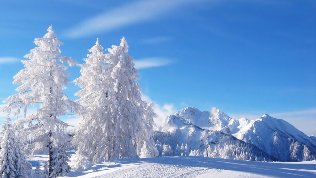 Winter Wallpaper Widescreen HD 1920x1080 2