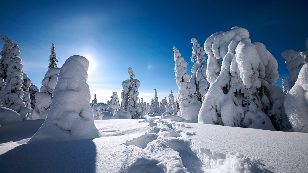 Winter Wallpaper Widescreen HD 1920x1080 7