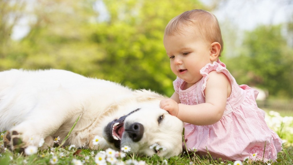 Baby Wallpapers baby_toddler_girl_grass_dog_game_80631_1366x768
