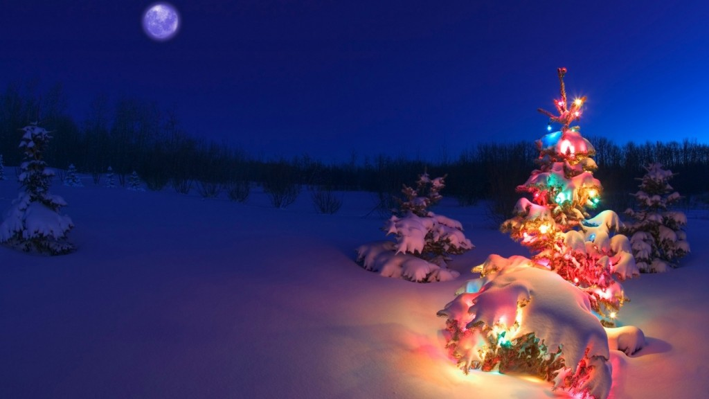 Christmas Background Wallpaper HD ws_Christmas_tree_in_the_snow_1366x768