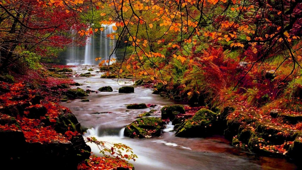 Desktop Fall Background Wallpaper HD 1366x768 autumn-trees-nature-landscape-leaf-leaves-desktop-background-images