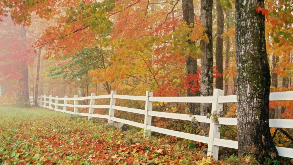 Desktop Fall Background Wallpaper HD 1366x768 fall-nature-backgrounds-wallres-4-5-desktop