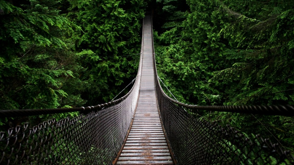 cool wallpapers Cool-Hanging-Bridge-1366x768