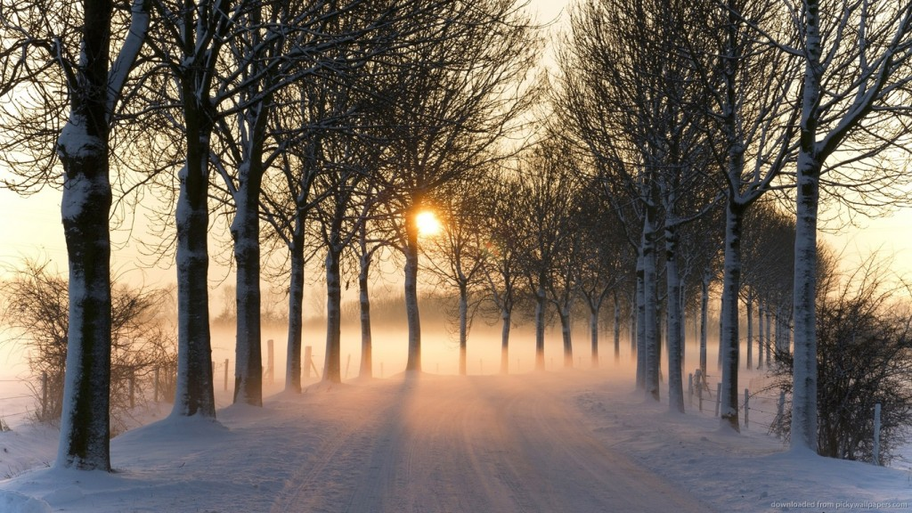 winter wallpaper 1366x768-misty-winter-middei-wallpaper-winter-wallpaper-1366x768-