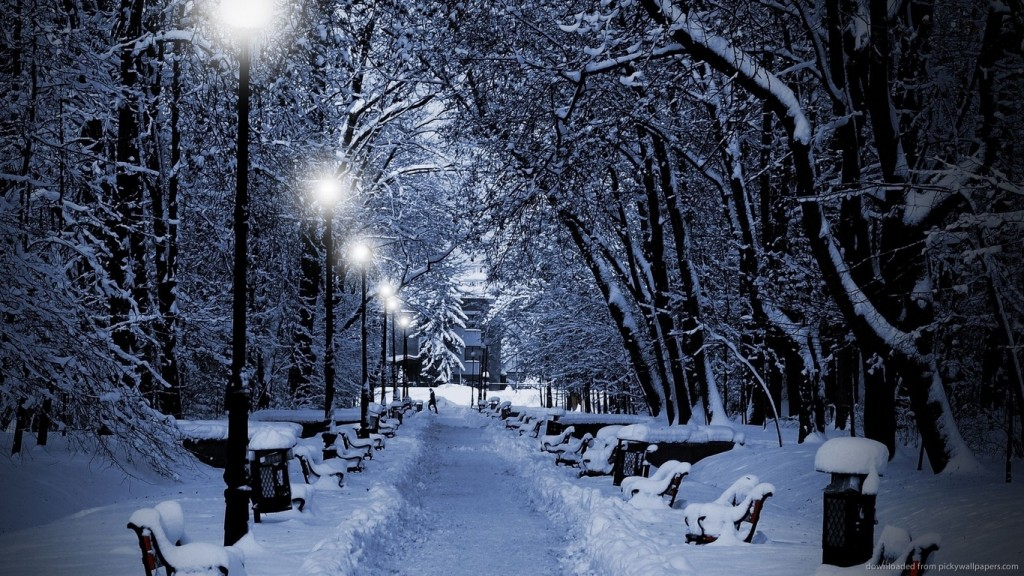 winter wallpaper Snowy-park