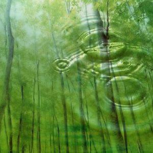 Nature-Green-Wallpaper-HD-1366x768-10-300x300
