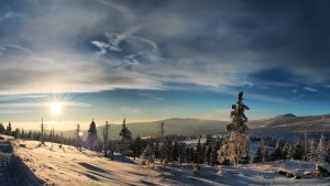 Winter Taustakuva Widescreen HD