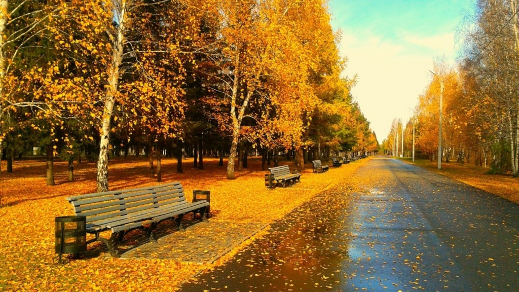 Autumn-wallpapers3-1024x576