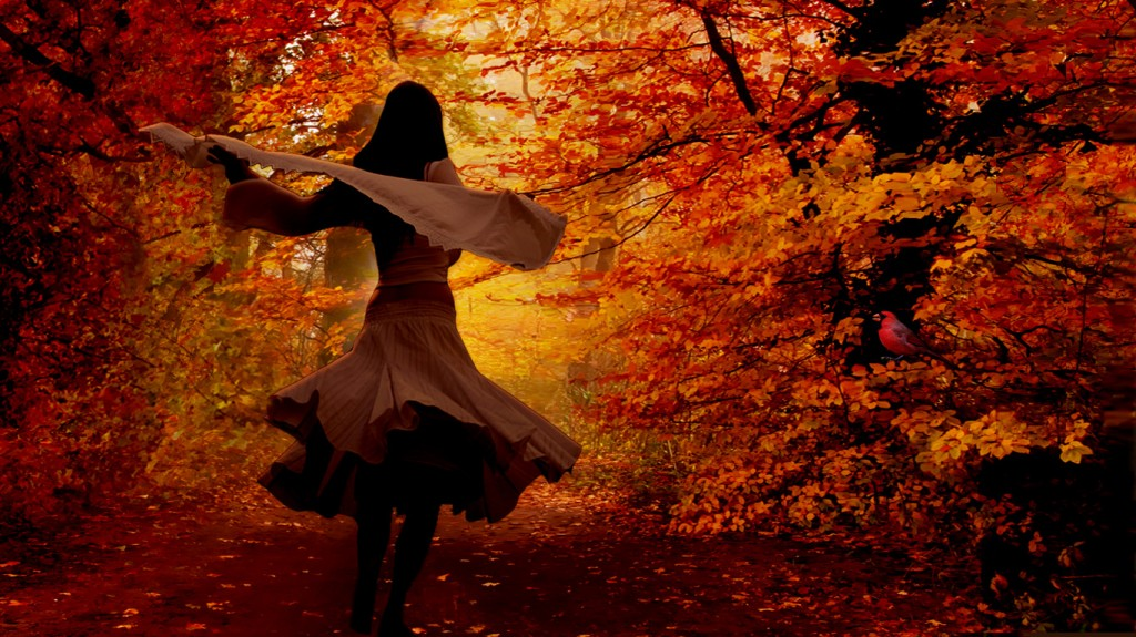 Autumn taustakuvia HD