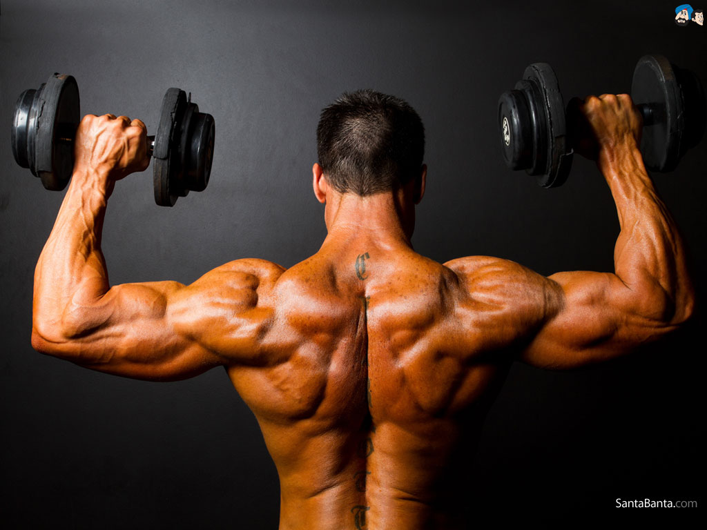 bodybuilding wallpaper (3)