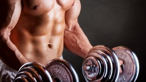 Bodybuilding Tapete HD Kollektionen