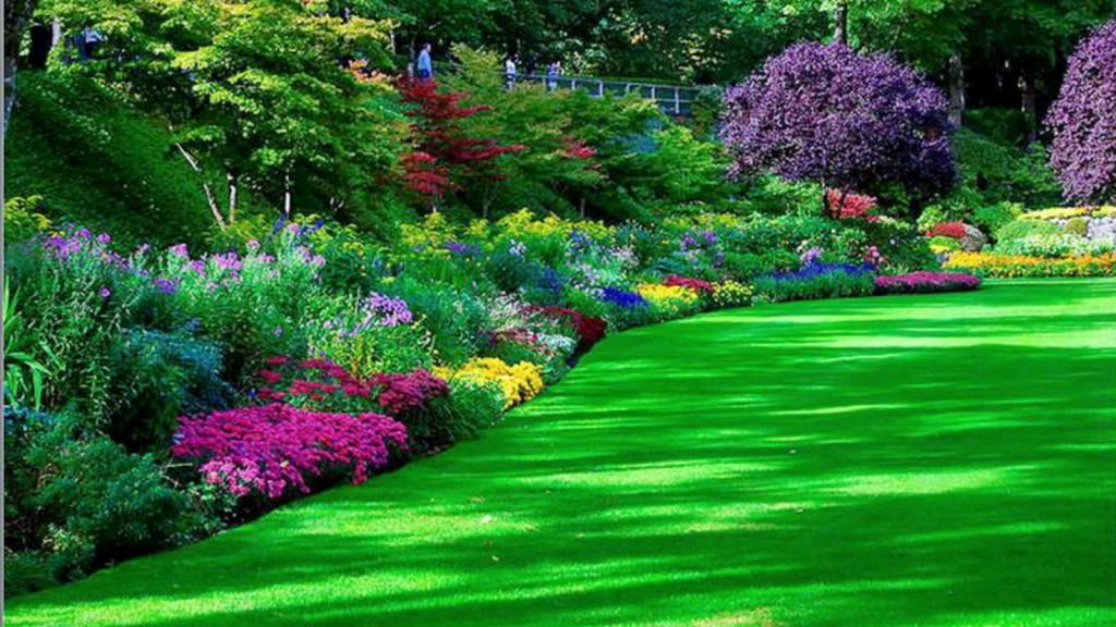 Garden-wallpaper-1024x576