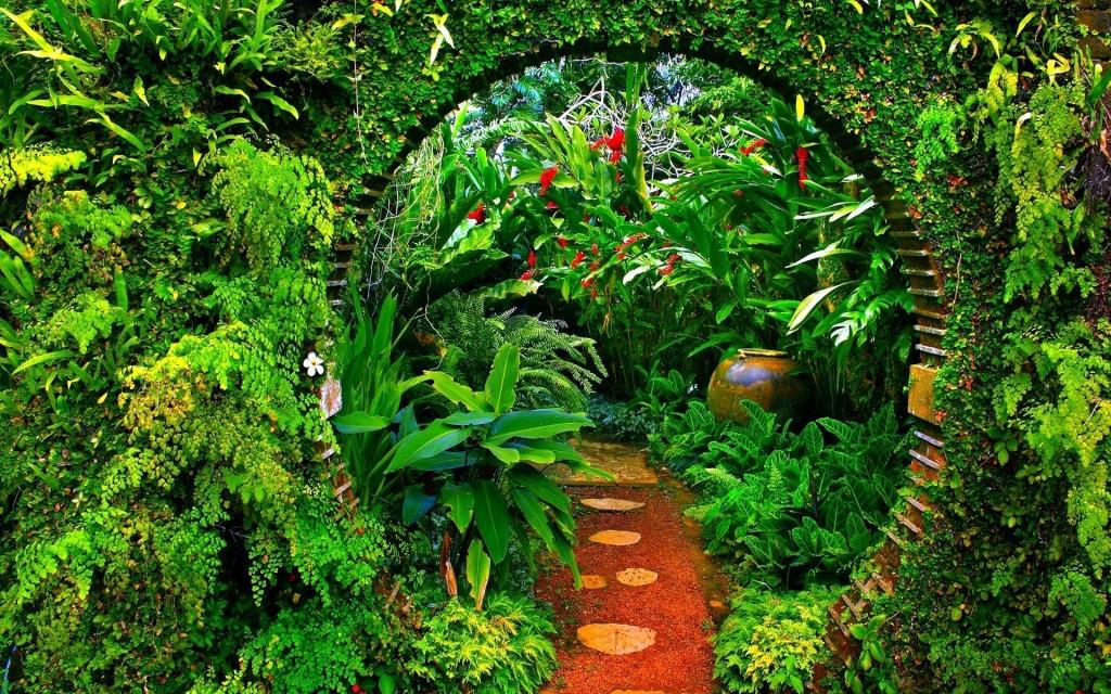 Garden wallpaper2