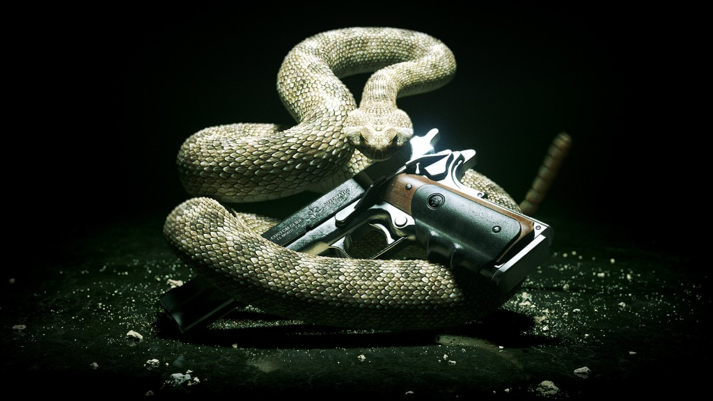 Snake-With-Gun-Wallpaper-HD