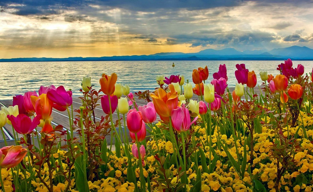 Spring-wallpapers2-1024x630