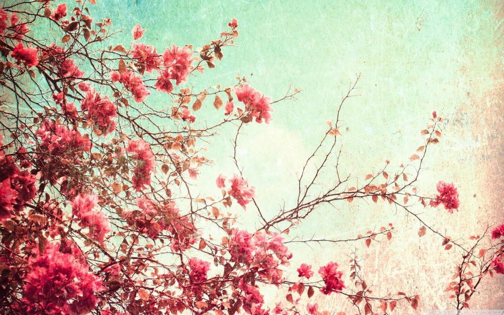 Vintage flower wallpaper5