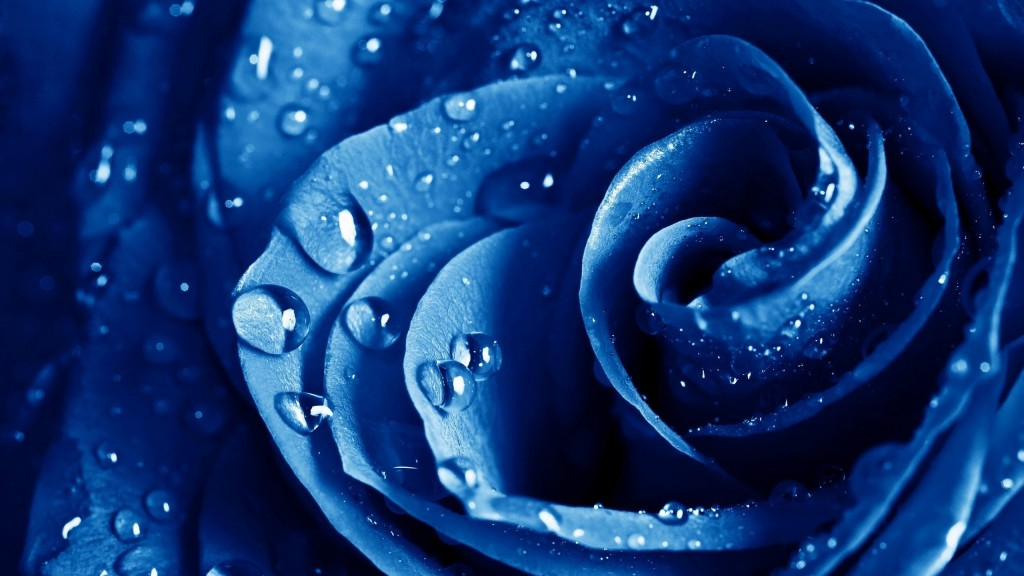 blue-wallpaper-hd1-1024x576