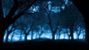 Donker blauw behang