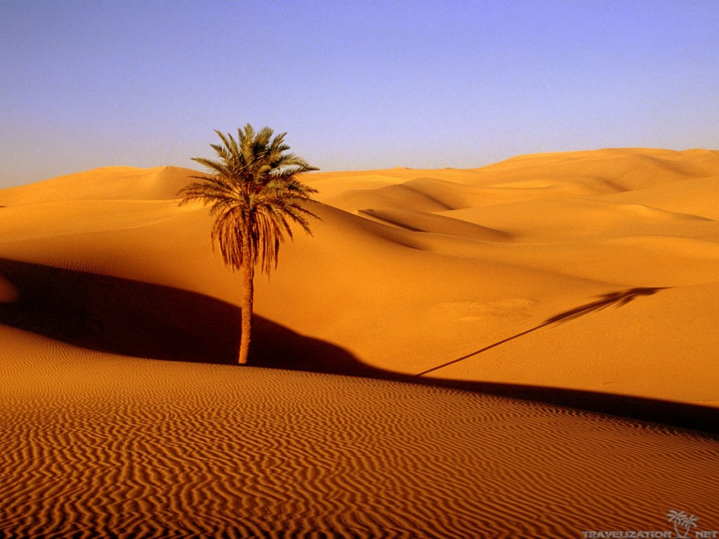 desert wallpaper HD