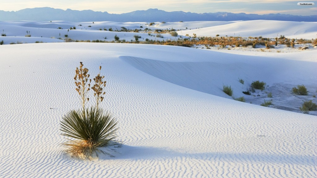 desert-wallpaper9-1024x576
