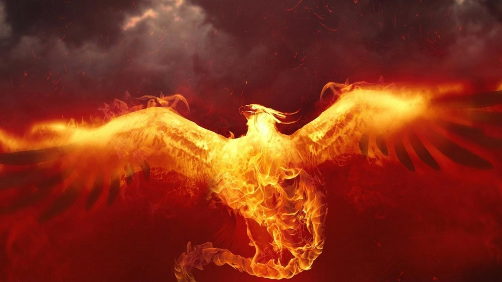 phoenix wallpaper3