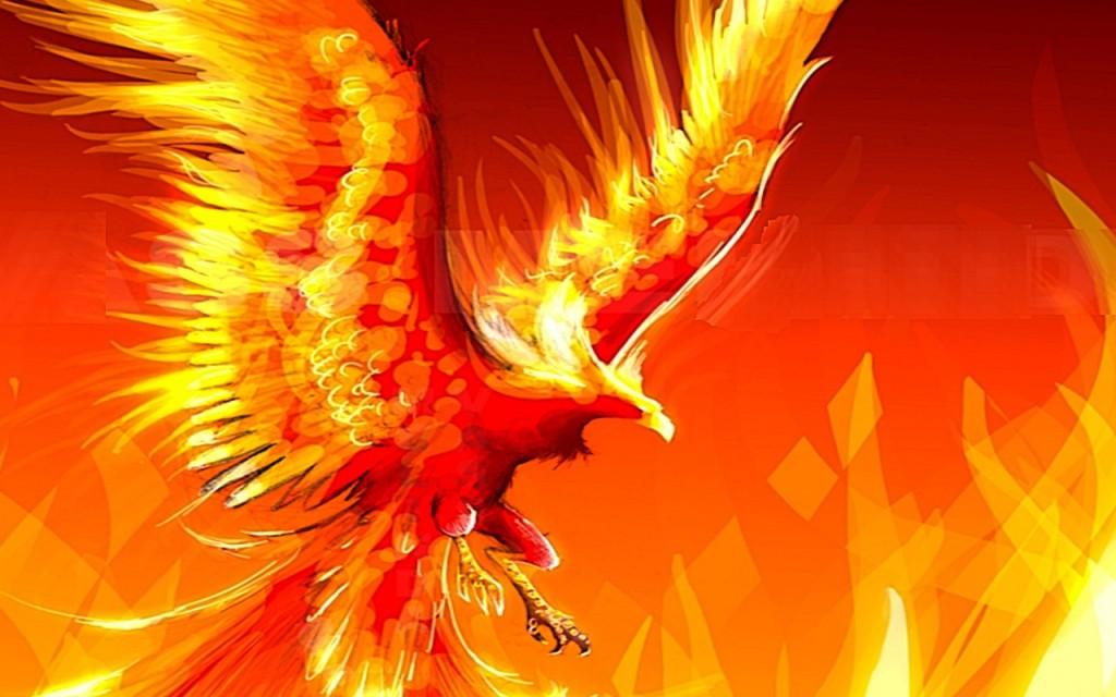 phoenix wallpaper6
