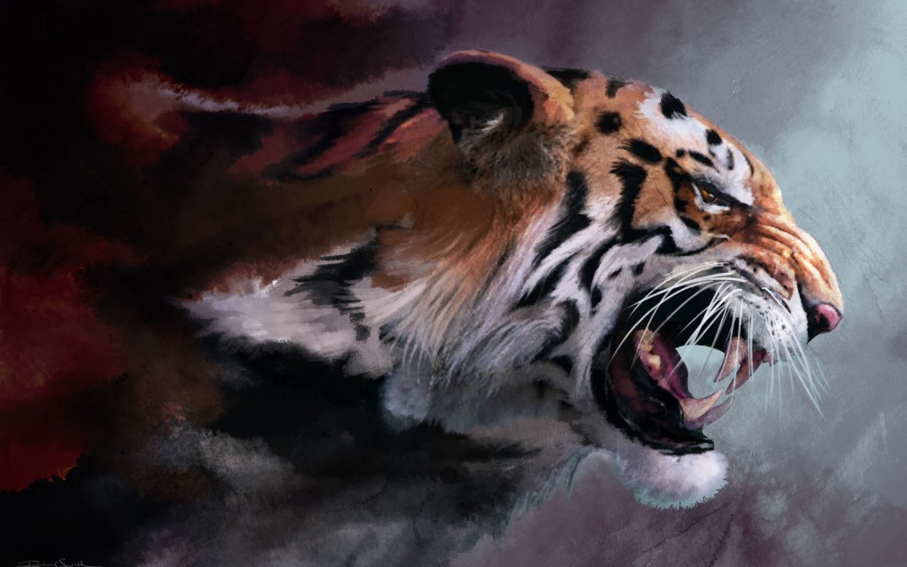 Tiger wallpapers9