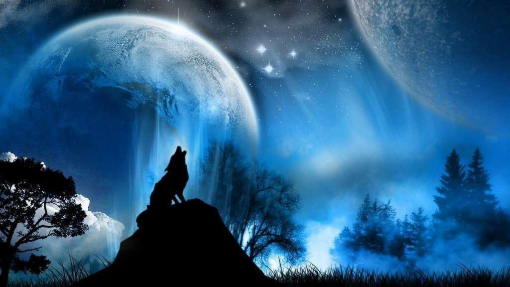 wolf wallpapers1