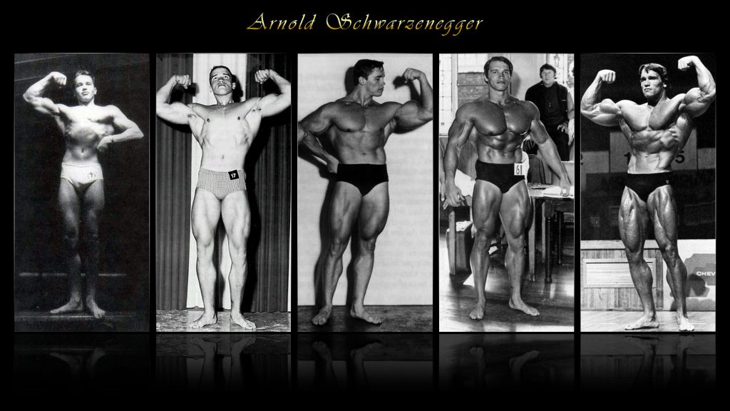 arnold schwarzenegger wallpaper HD4