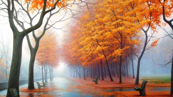 autumn wallpaper hd HD2