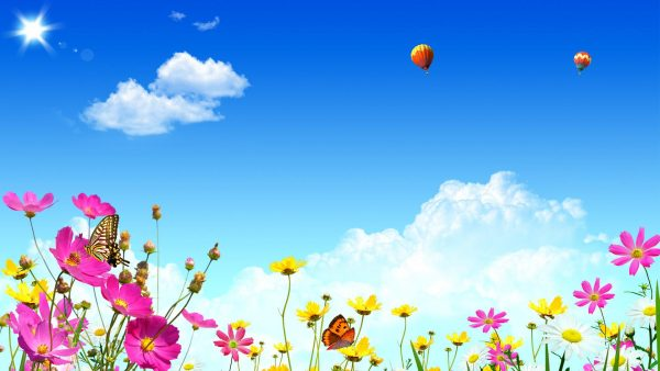 balloon wallpaper HD5