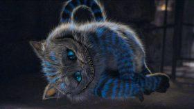 cheshire cat wallpaper HD