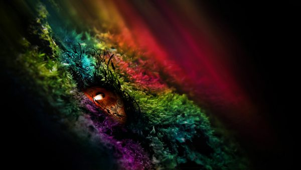 Farben Tapete HD2