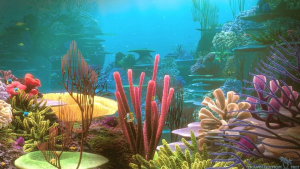 coral-wallpaper-HD10-600x338