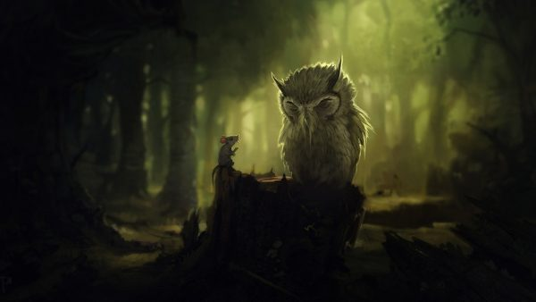 dark forest wallpaper HD5