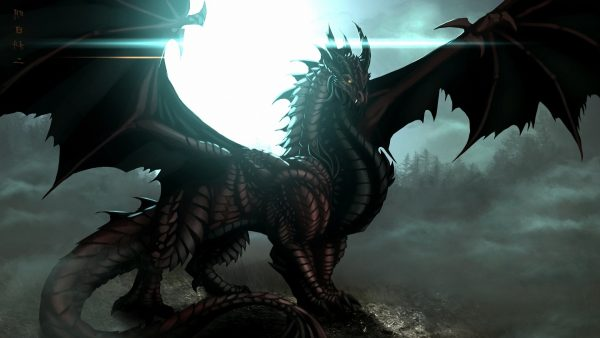 dragon wallpaper hd HD3