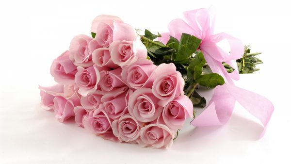 pink-roses-wallpaper-HD3-600x338