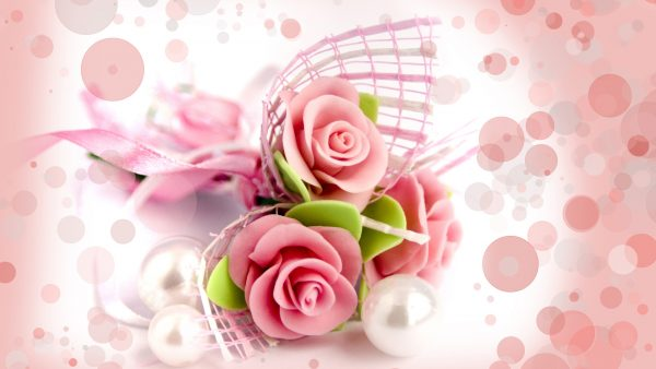 pink roses wallpaper HD9