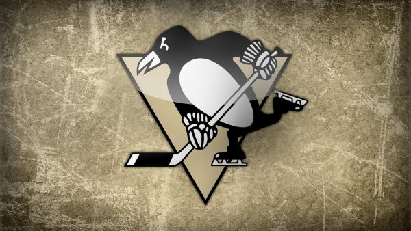 pittsburgh penguin wallpaper HD2