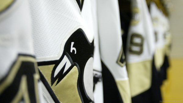 pittsburgh penguin wallpaper HD4